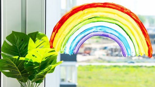The image shows a rainbow painted onto a window with a green plant next to it.